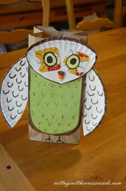 completed owl