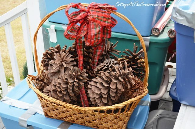 basket of large pine cones