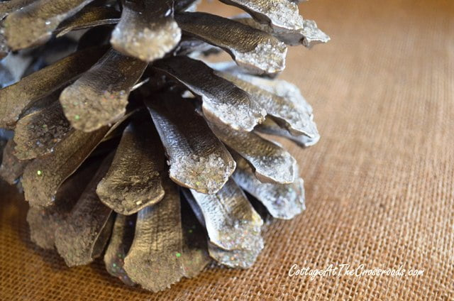 Epson salt and glitter on the tips of painted pine cones
