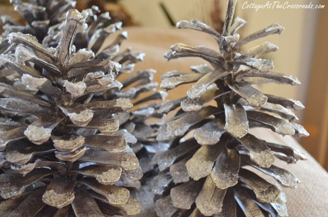 glitter and Epsom salt added to pine cones