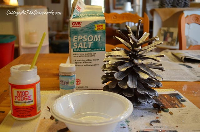 supplies needed to decorate pine cones