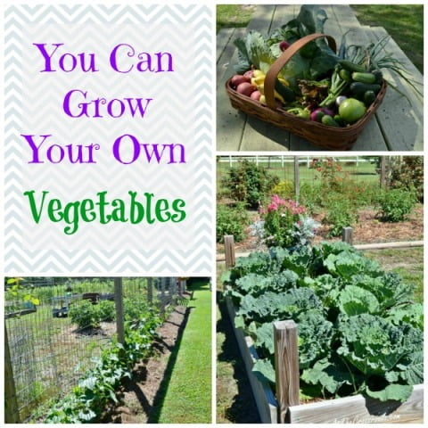 vegetable garden tour cottage at the crossroads