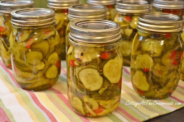 Zesty Bread 'n Butter Pickles