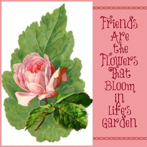 Friends are the Flowers