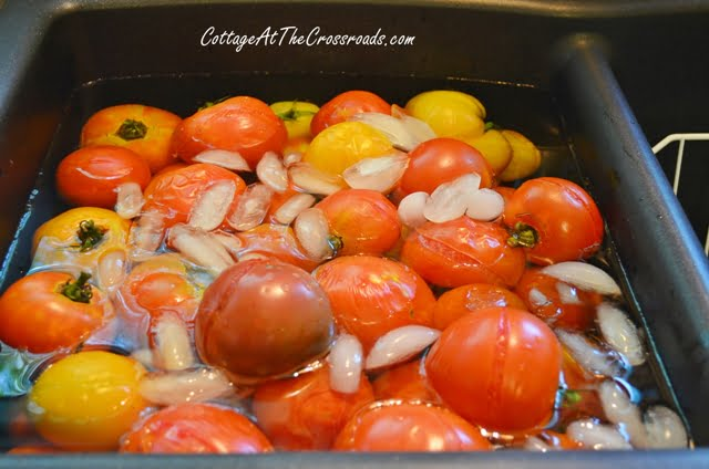 Blanched tomatoes in an ice bath