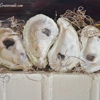 oyster shell mantel display