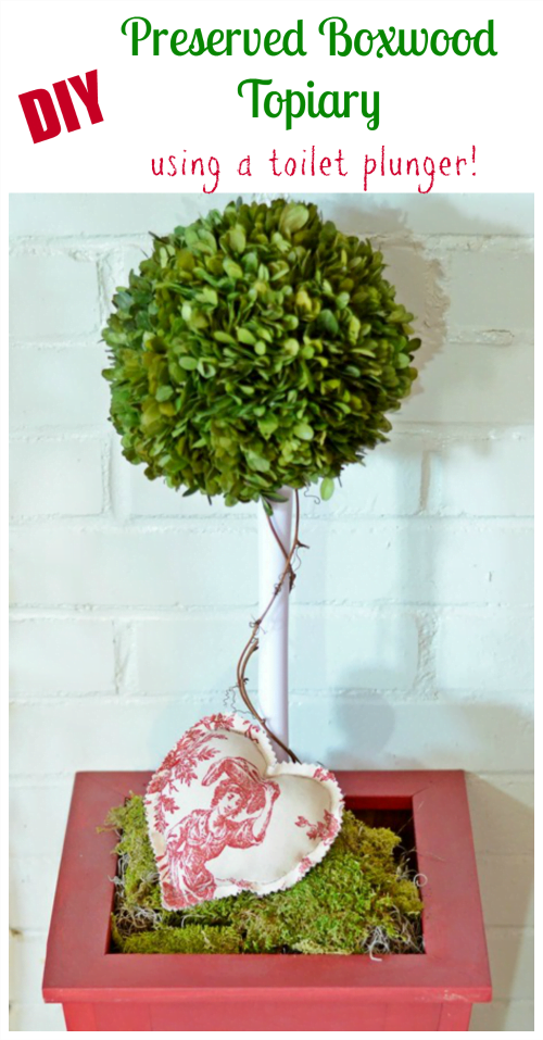 DIY Preserved Boxwood Topiary using a Toilet Plunger | Cottage at the Crossroads