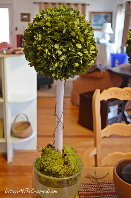DIY Preserved Boxwood Topiary made with a Toilet Plunger | Cottage at the Crossroads