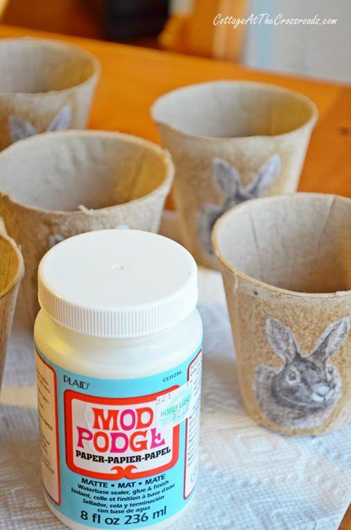 Bunny Peat Pots
