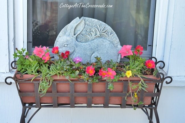 bunny in a planter | Cottage at the Crossroads