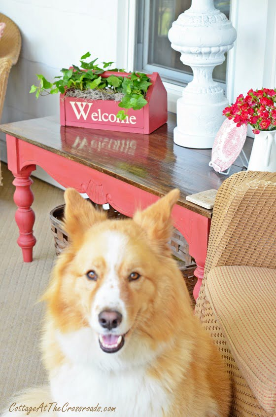 Lucy on the Porch | Cottage at the Crossroads