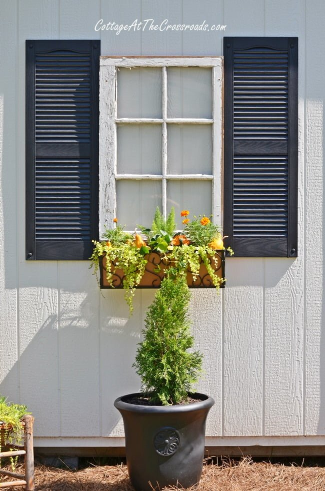 fall window boxes | Cottage at the Crossroads