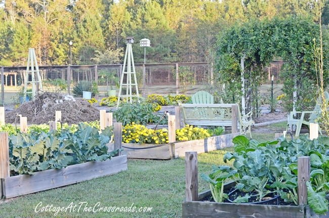 fall vegetable garden cottage at the crossroads - Fall Vegetable Garden