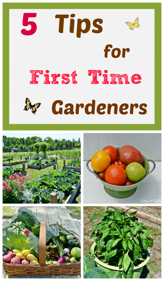 5 Tips for First Time Gardeners | Cottage at the Crossroads