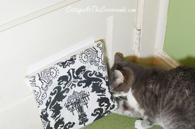 Easy Cat Door Fix | Cottage at the Crossroads