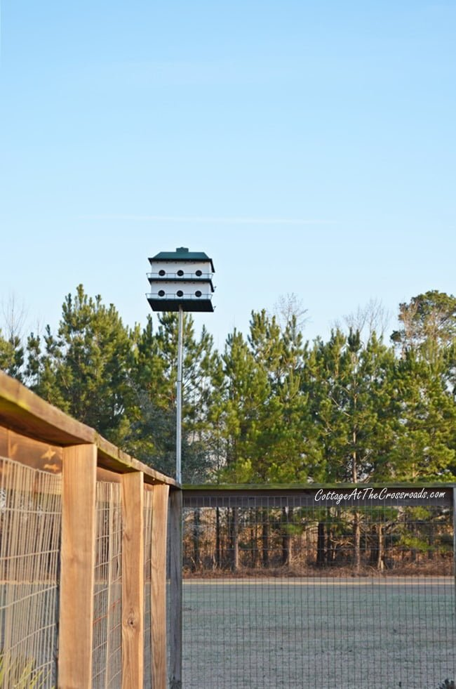 Purple Martin House | Cottage at the Crossroads