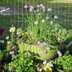 BBQ grill herb planter