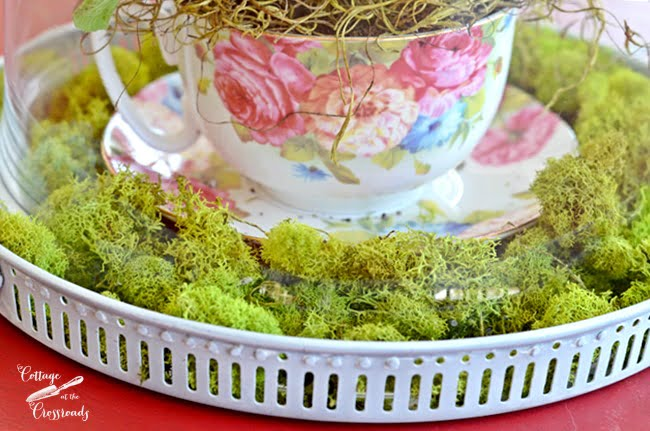 primroses planted in a tea cup | Cottage at the Crossroads