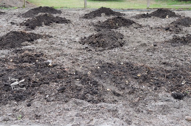 piles of compost | Cottage at the Crossroads