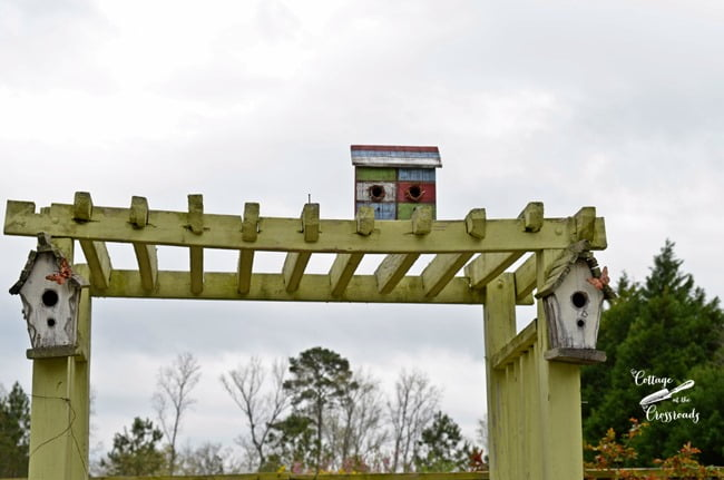 birdhouses on an arbor