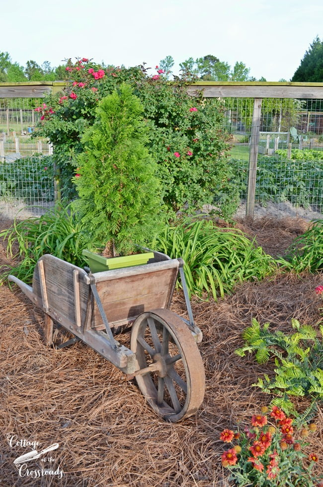 antique wheelbarrow | Cottage at the Crossroads