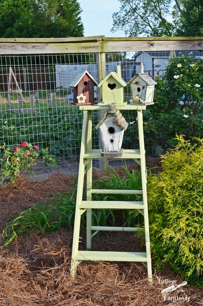 bird houses on an old ladder | Cottage at the Crossroads