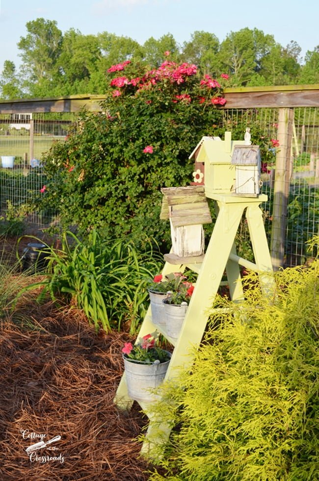 old wooden ladder with birdhouses and  red petunias. | Cottage at the Crossroads