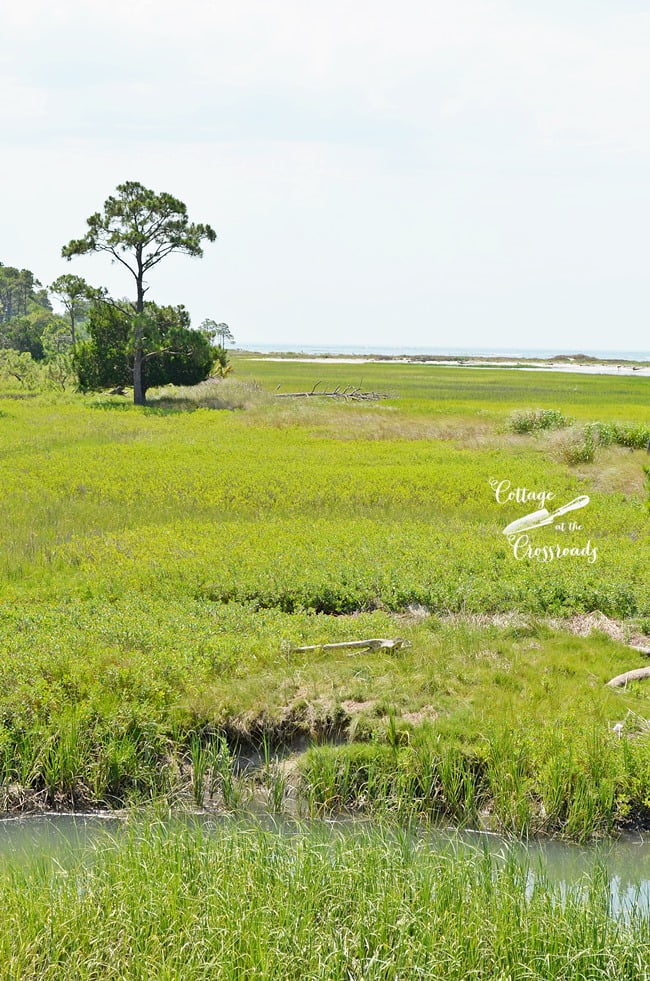 The beautiful Lowcountry of Scouth Carolina | Cottage at the Crossroads