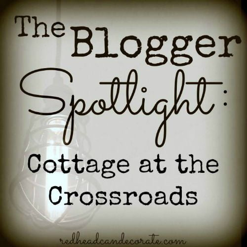 The Blogger Spotlight