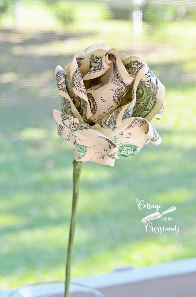 making roses from money