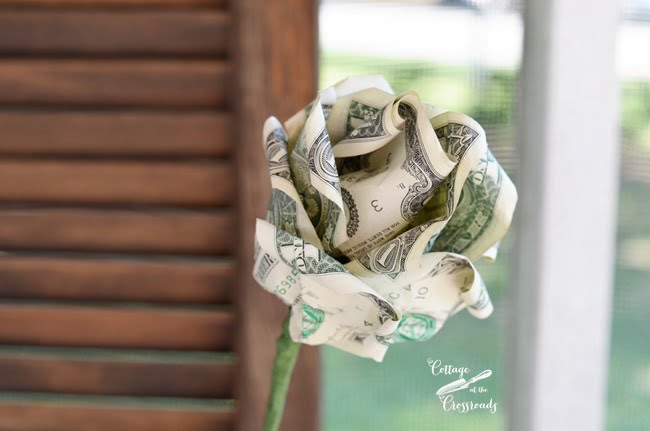 making a rose out of money