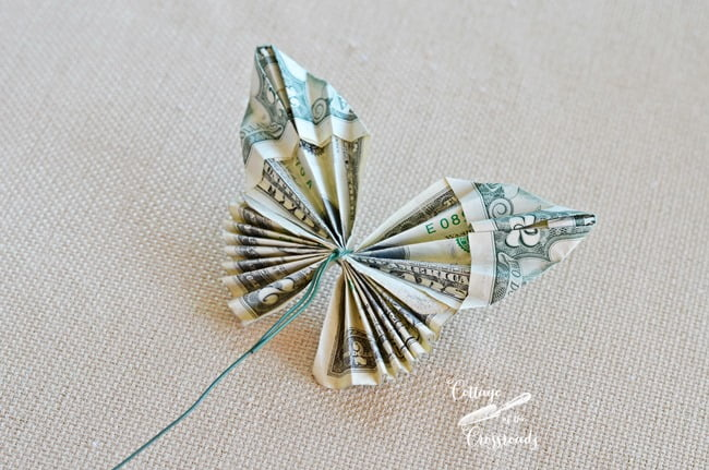 butterfly made from currency
