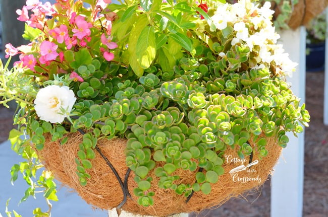 flower baskets on wooden posts | Cottage at the Crossroads