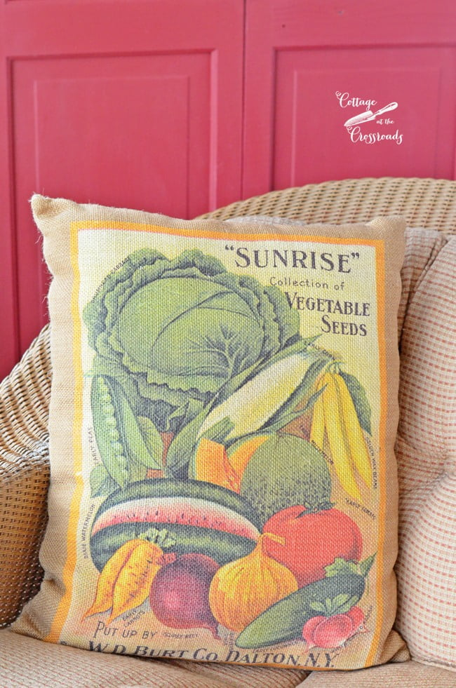 Seed catalog pillow