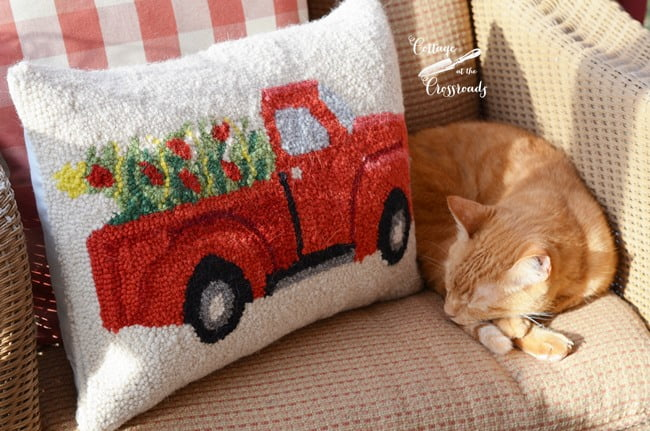 Henry beside a Christmas truck pillow