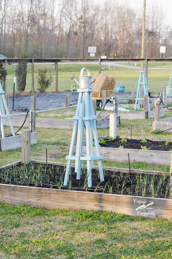 wooden pyramid shaped trellis | Cottage at the Crossroads