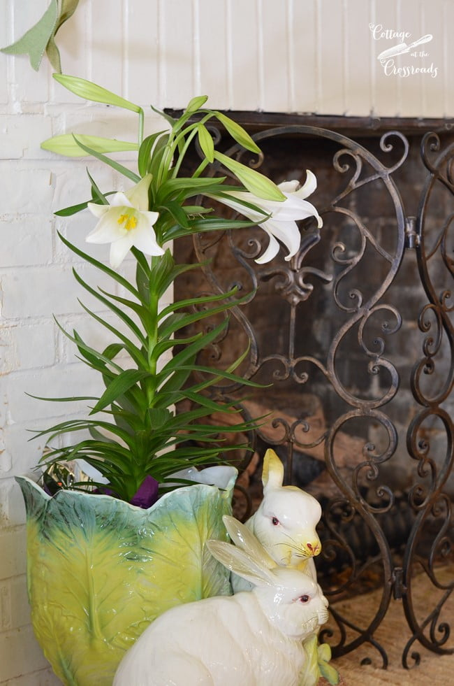 Easter lily in a bunny planter   Cottage at the Crossroads