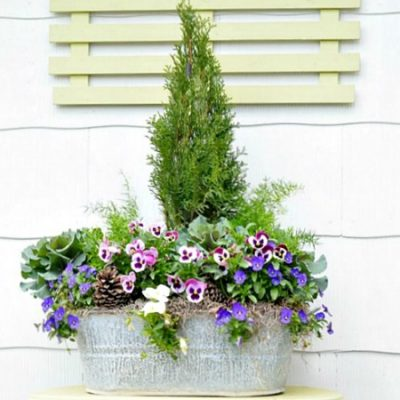 spring galvanized bucket planter | Cottage at the Crossroads