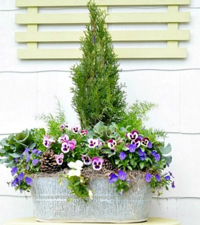 spring galvanized bucket planter   Cottage at the Crossroads