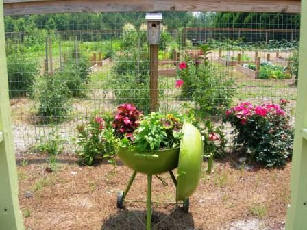 Creative Container Gardening Ideas - Cottage at the Crossroads