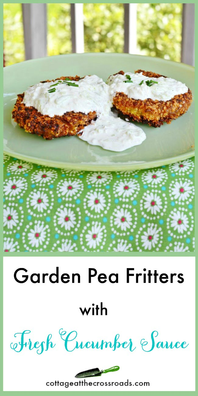 Delicious Garden Pea Fritters with Fresh Cucumber Sauce