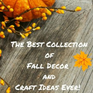 100 Fall Decor and Craft Ideas