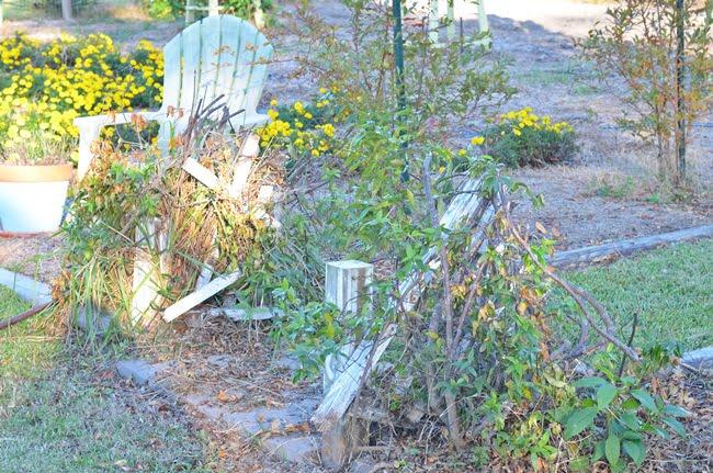 arbor destroyed during Hurricane Matthew