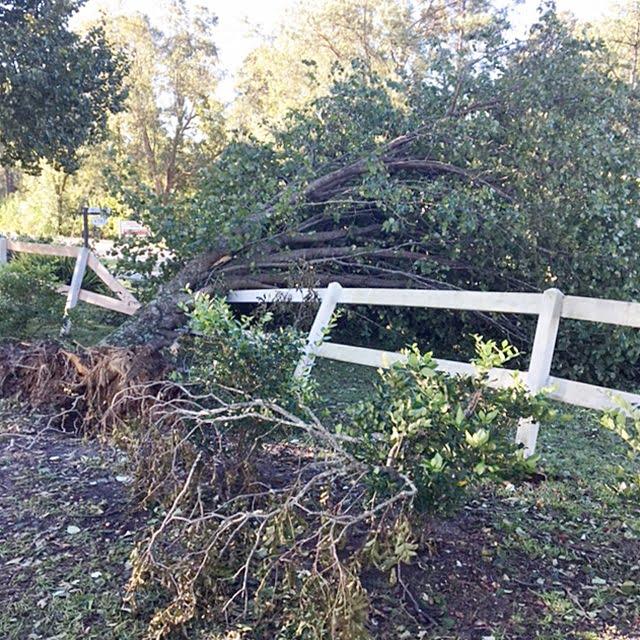 fence damaged during Hurricane Matthew