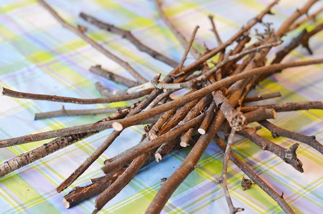 twigs from the yard