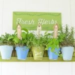 How to Make a Hanging Herb Garden | Cottage at the Crossroads