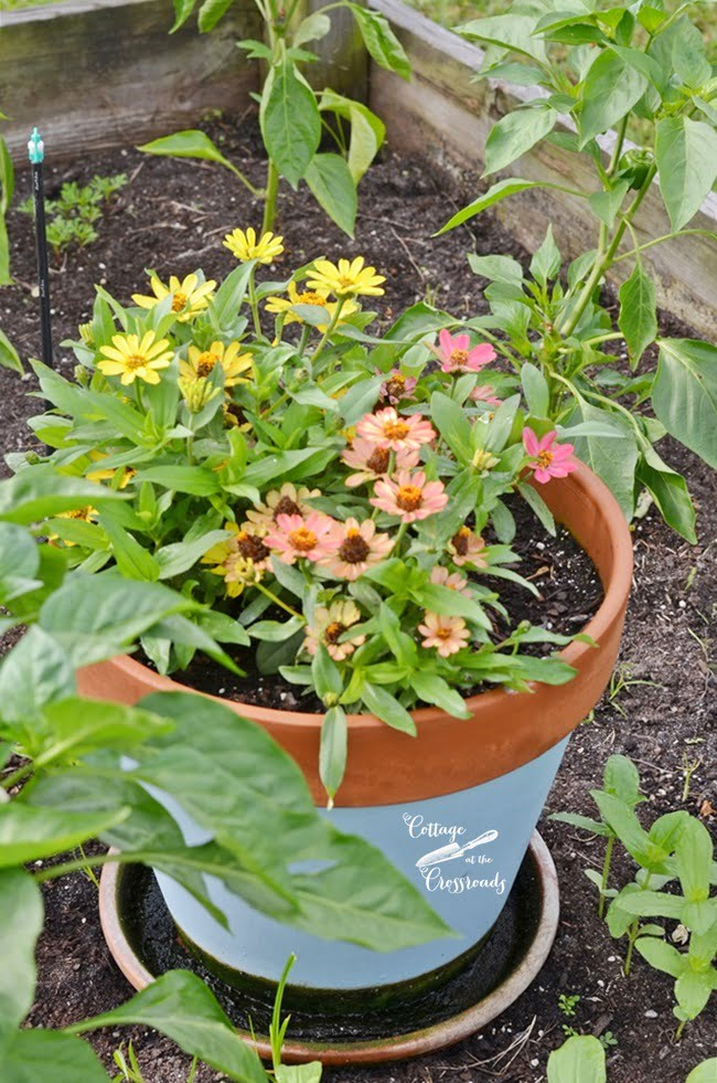 flower gardening ideas | Cottage at the Crossroads