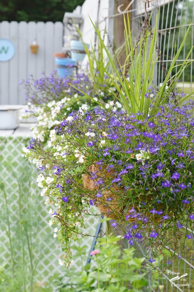 flower gardening ideas | Cottage at the Crossroads