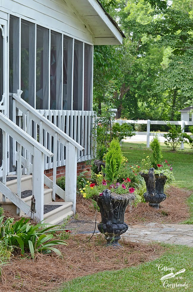 flowers and cypress plants in urns | Cottage at the Crossroads