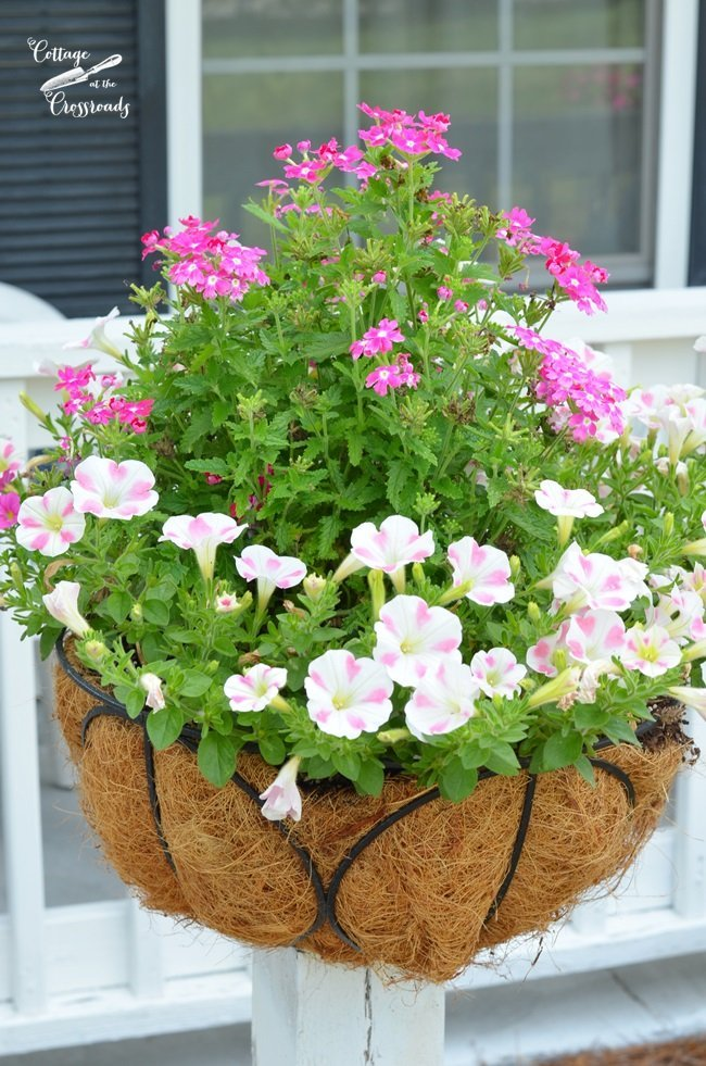 flower pots on wooden posts | Cottage at the Crossroads